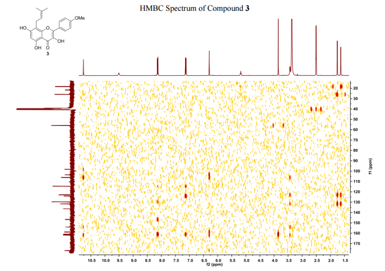 HMBC1