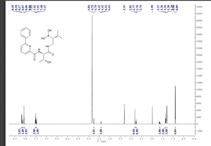 CP NMR